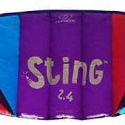 Flexifoil-24m226m-Wide-Sting-4-Line-Power-Kite-with-90-Day-Money-Back-Guarantee-By-World-Record-Winning-Power-Kite-Designer-Safe-Reliable-and-Durable-Family-Orientated-Power-Kiting-Kite-Training-and-I-0