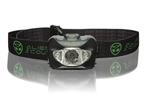 Head Torch For Dog Walking