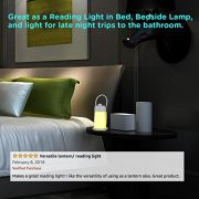 Convertible-LED-Reading-Light-Lamp-and-Camping-Lantern-Bedside-Night-Light-with-Eye-caring-Soft-Warm-White-Light-Flexible-Neck-Adjustable-Brightness-Rechargeable-Great-for-Tent-Light-0-6